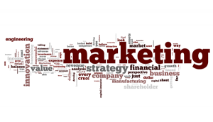 Marketing Innovation and Financial Strategy